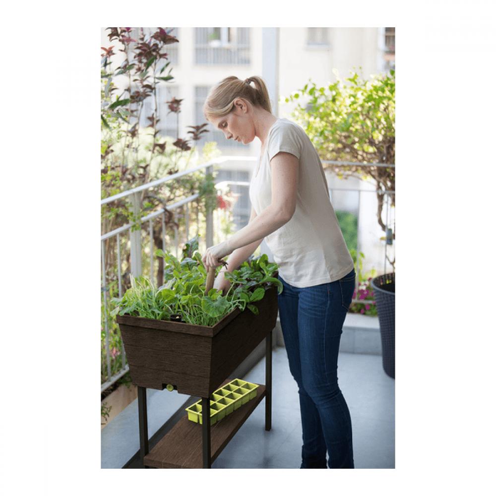 Ghiveci pentru balcon - Rasaduri si flori