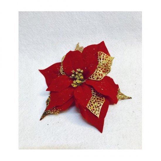 Capete De Floare A Craciunului Cu Petale Rotunjite