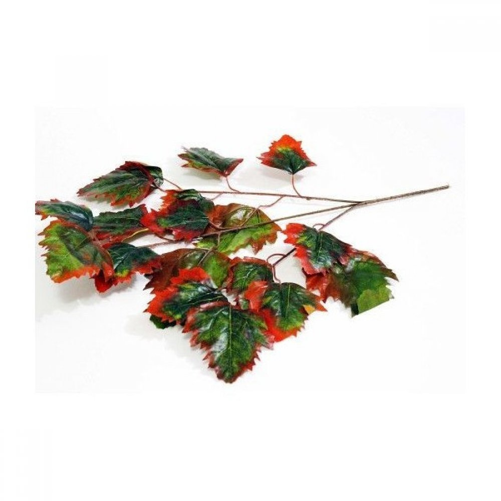 Crengi cu Frunze de Stejar 12/Set 2