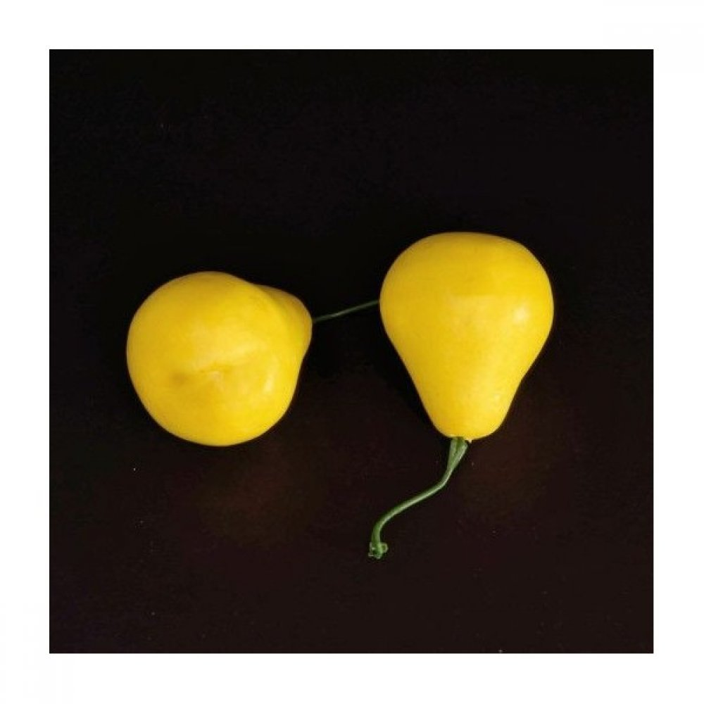 Fructe Artificiale Din Plastic 10/set