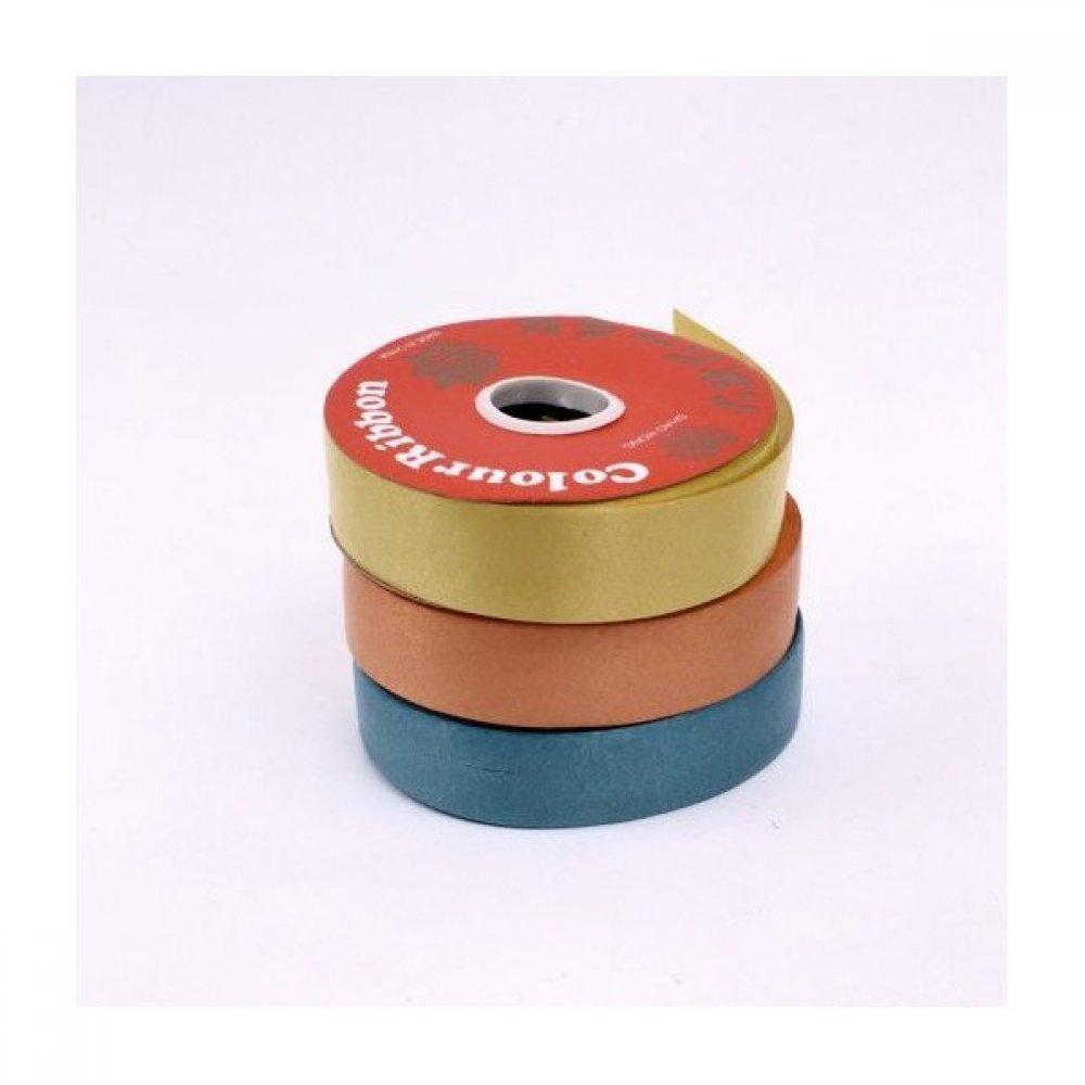 Panglica Plastic Tip Rafie 2.2cm/50m
