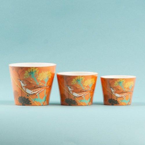 Set 3 Ghivece Ceramica Pasari Portocaliu Bg99