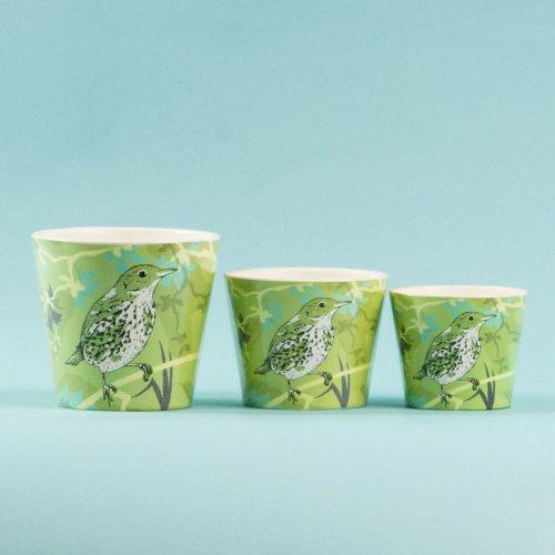Set 3 Ghivece Ceramica Pasari Verde Bg99