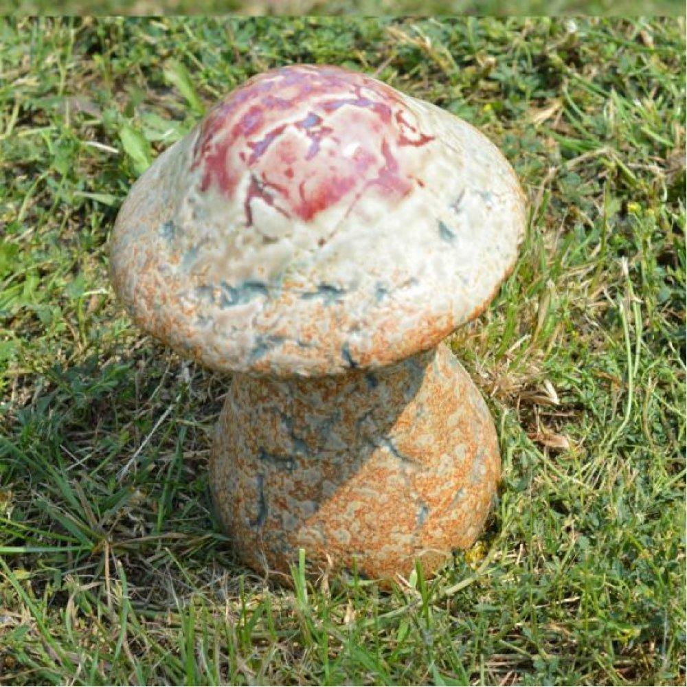 Ciuperca ornamentala pentru gradina